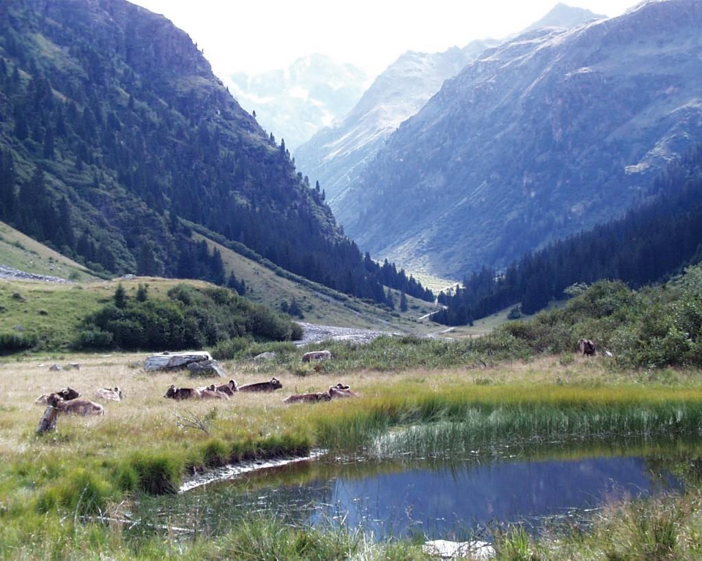 alp-erlebnis-garnera-garneratal