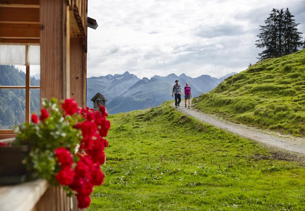 Wandern im Bregenzerwald_Alpe Sattelegg Au 1 © Adolf Bereuter_Bregenzerwald Tourismus - Kopie