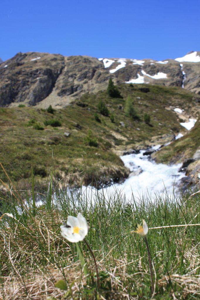 Panoramaweg Stotzboden, © Österreichs Wanderdörfer, Corinna Widi
