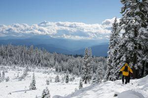 Winterwanderer, Unplash
