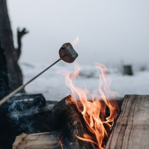 grillen winter, Unsplash
